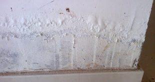 hqdefault 310x165 - كيفية الحفاظ على الجدار من التسربات المائية